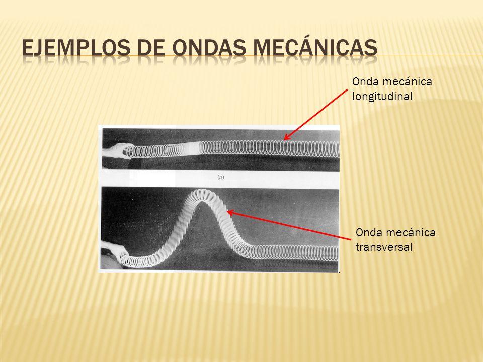 Ejemplos de ondas mecánicas