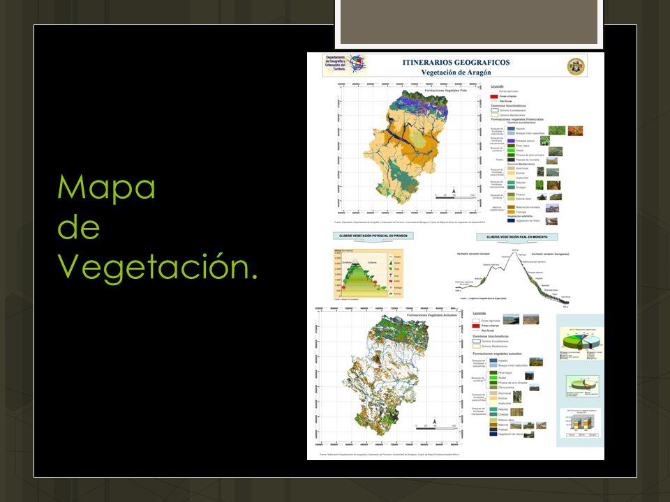 Mapa de Vegetación.