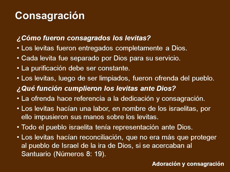 ¿Cómo fueron consagrados los levitas