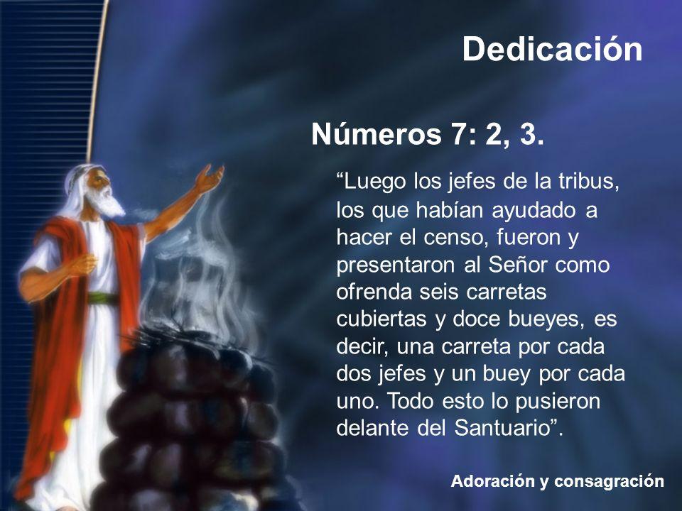 Números 7: 2, 3.