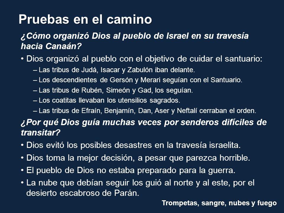 ¿Cómo organizó Dios al pueblo de Israel en su travesía hacia Canaán