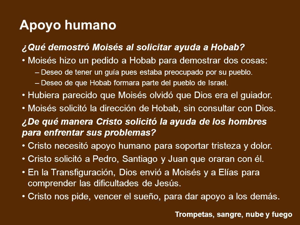 ¿Qué demostró Moisés al solicitar ayuda a Hobab