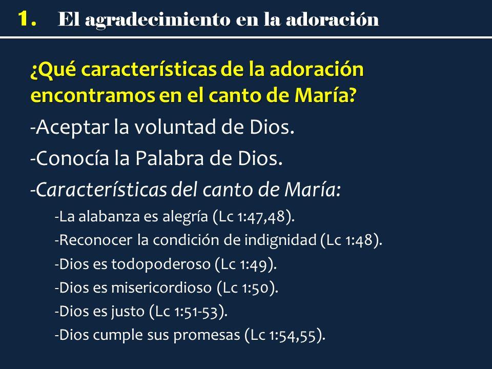 ¿Qué características de la adoración encontramos en el canto de María