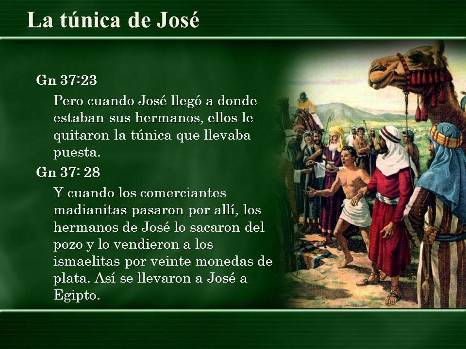 Gn 37:23 Pero cuando José llegó a donde estaban sus hermanos, ellos le quitaron la túnica que llevaba puesta.