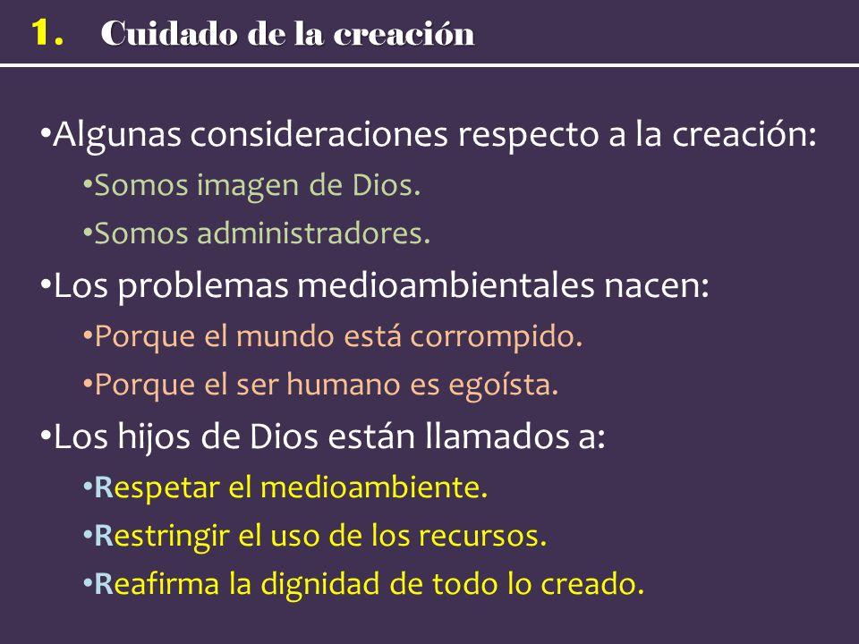 Algunas consideraciones respecto a la creación: