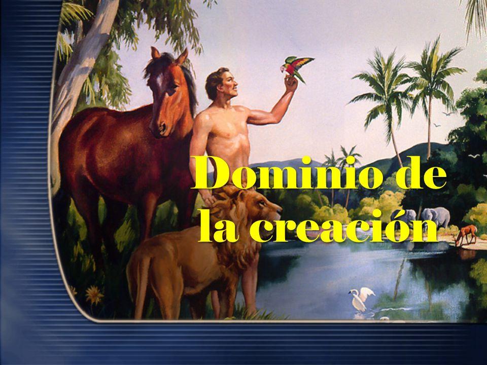 Dominio de la creación