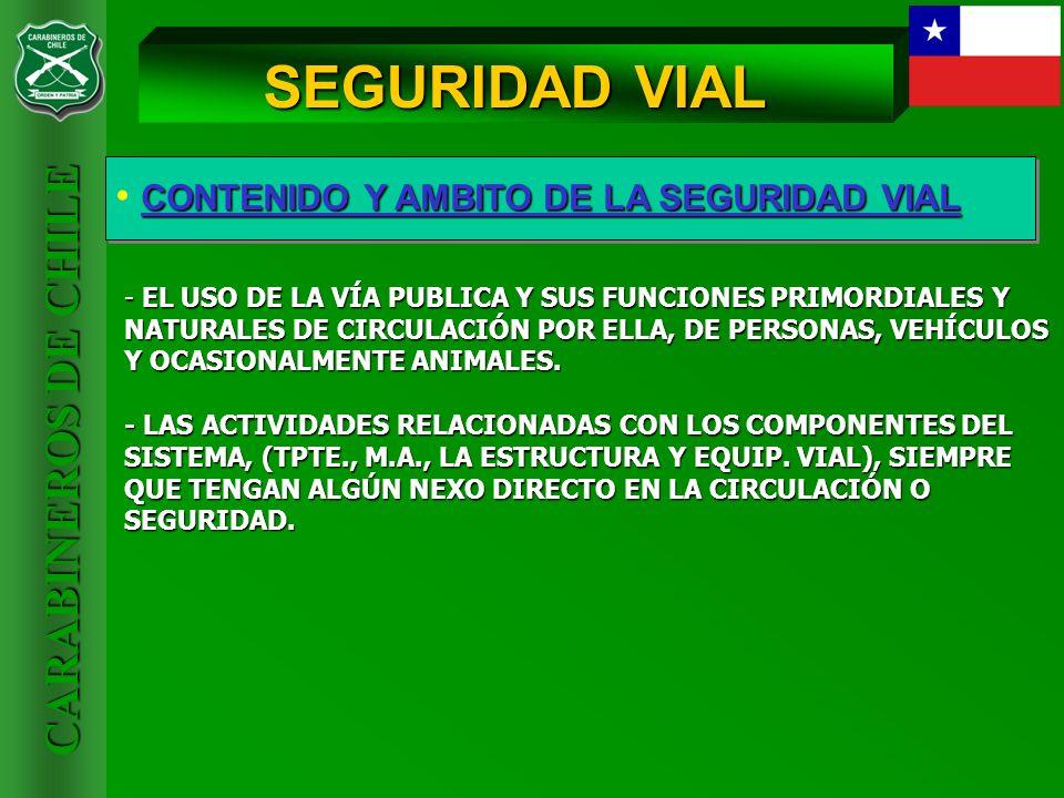 SEGURIDAD VIAL CONTENIDO Y AMBITO DE LA SEGURIDAD VIAL