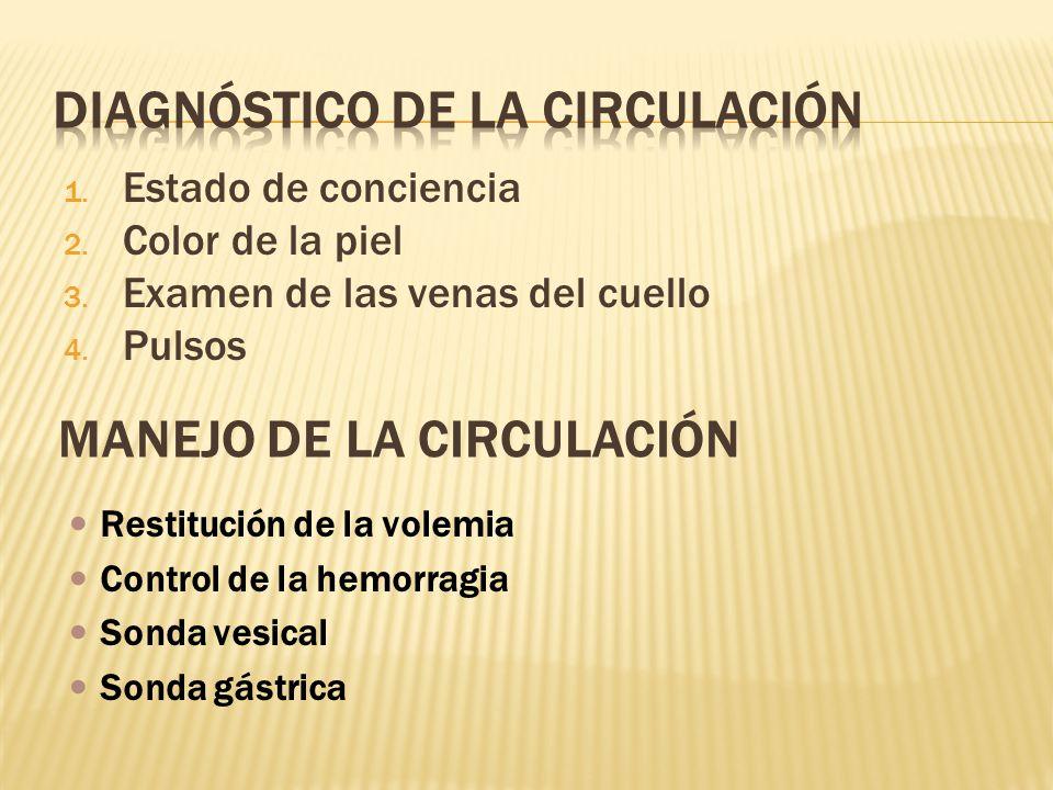 DIAGNÓSTICO DE LA CIRCULACIÓN