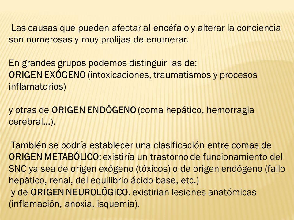 Las causas que pueden afectar al encéfalo y alterar la conciencia son numerosas y muy prolijas de enumerar.