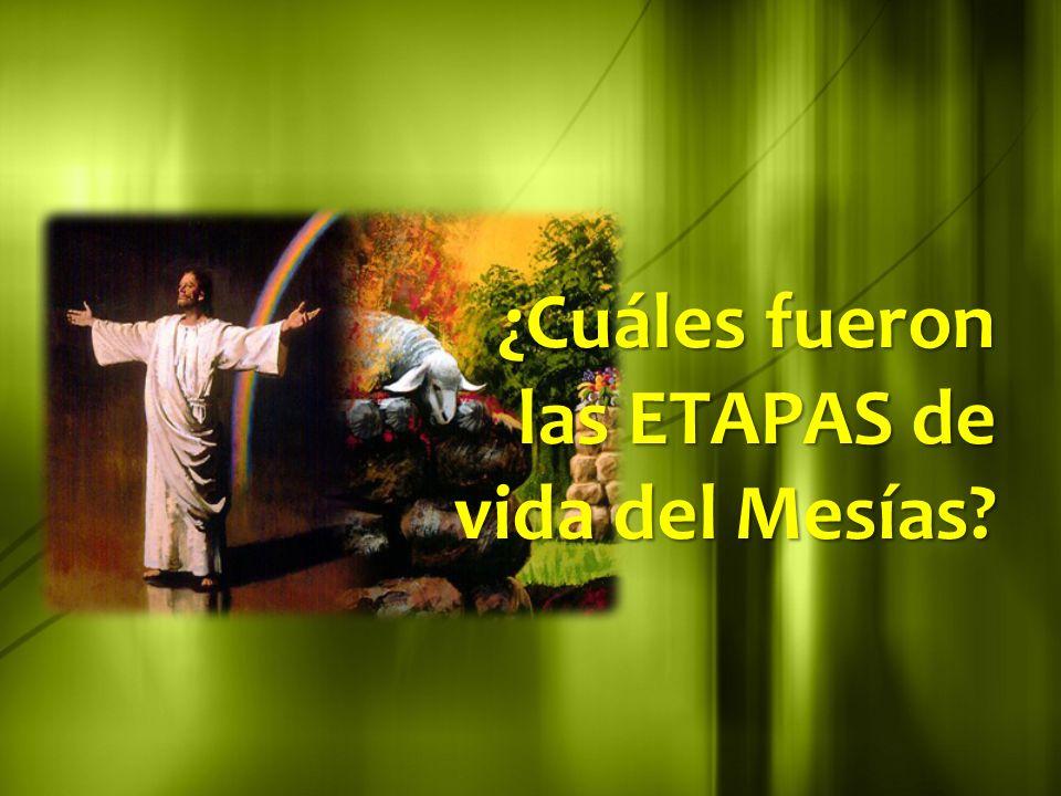 ¿Cuáles fueron las ETAPAS de vida del Mesías