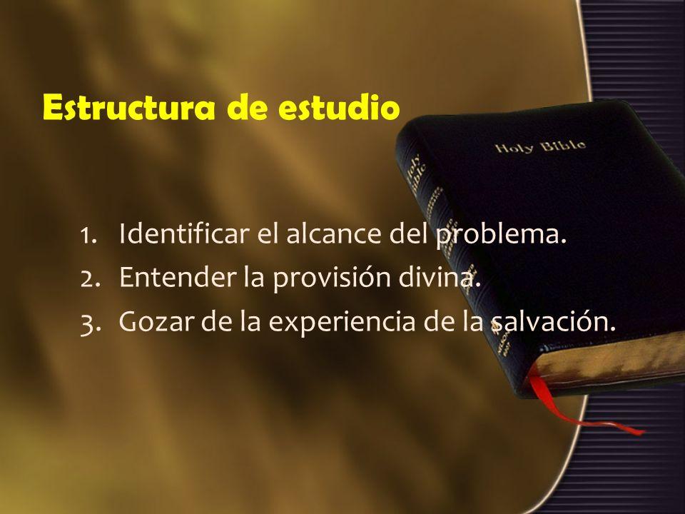 Estructura de estudio Identificar el alcance del problema.