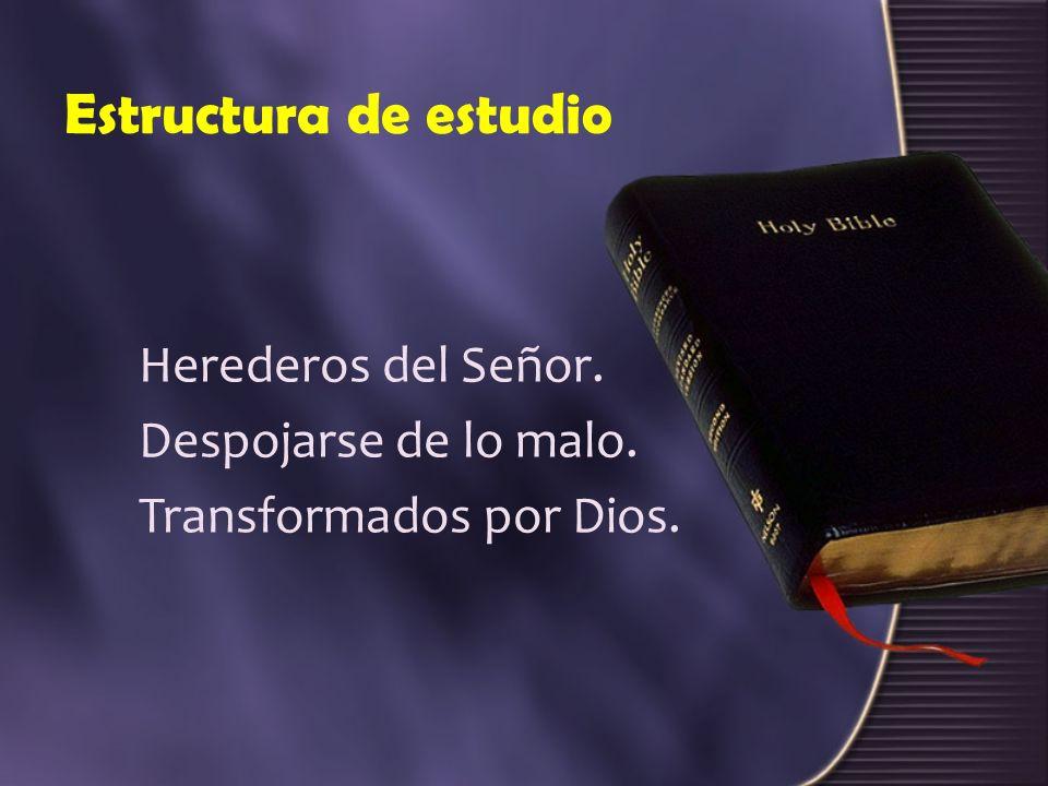 Estructura de estudio Herederos del Señor. Despojarse de lo malo.