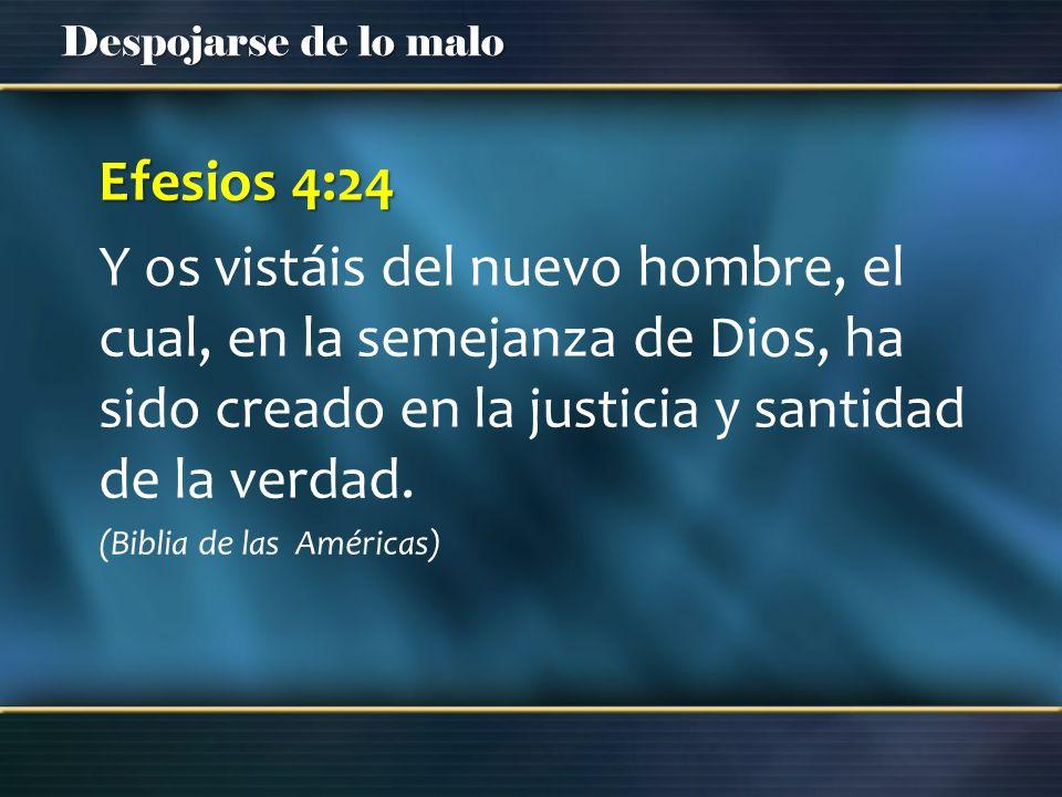 Efesios 4:24Y os vistáis del nuevo hombre, el cual, en la semejanza de Dios, ha sido creado en la justicia y santidad de la verdad.