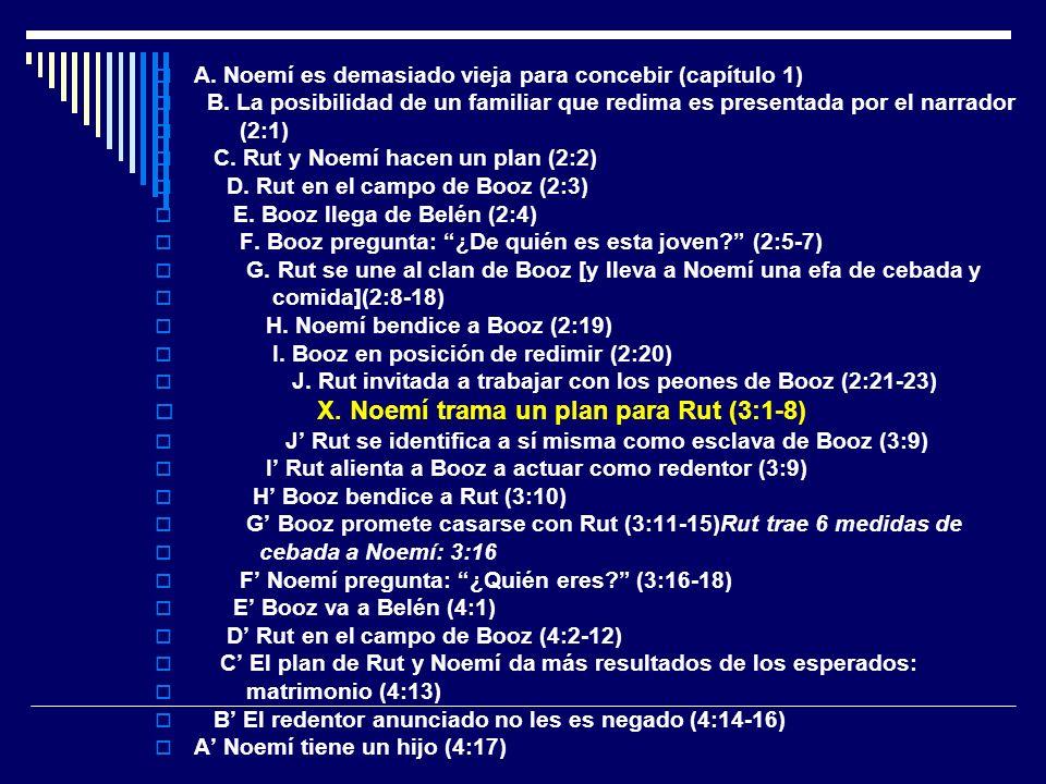 X. Noemí trama un plan para Rut (3:1-8)