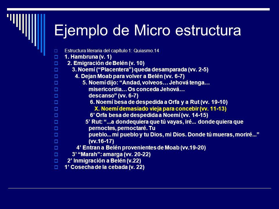 Ejemplo de Micro estructura