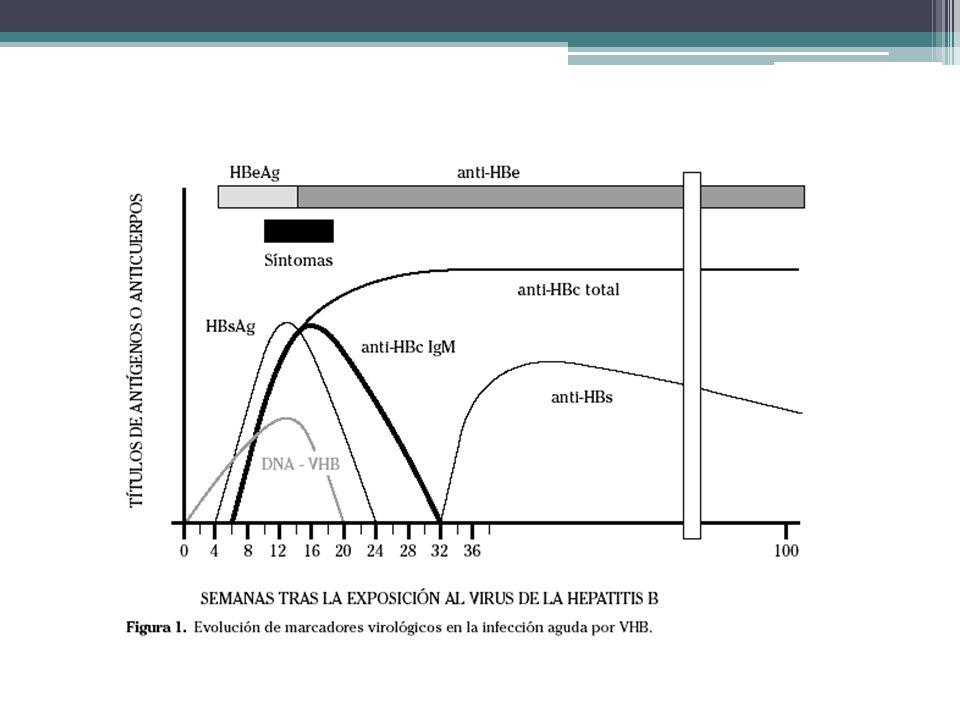En este cuadro vemos los marcadores víricos en hepatitis B aguda con evolución a la curación. El primer marcador en detectarse es el DNA-VHB, El HBsAg se detecta a las 6 semanas, poco después se detecta el HBeAg.
