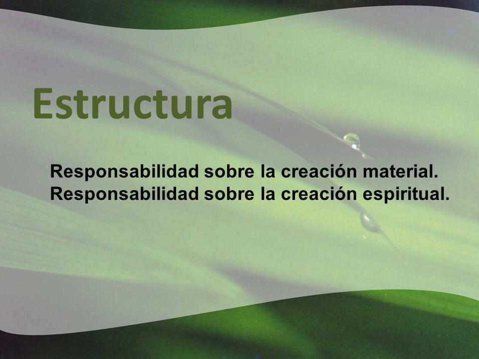 Estructura Responsabilidad sobre la creación material.