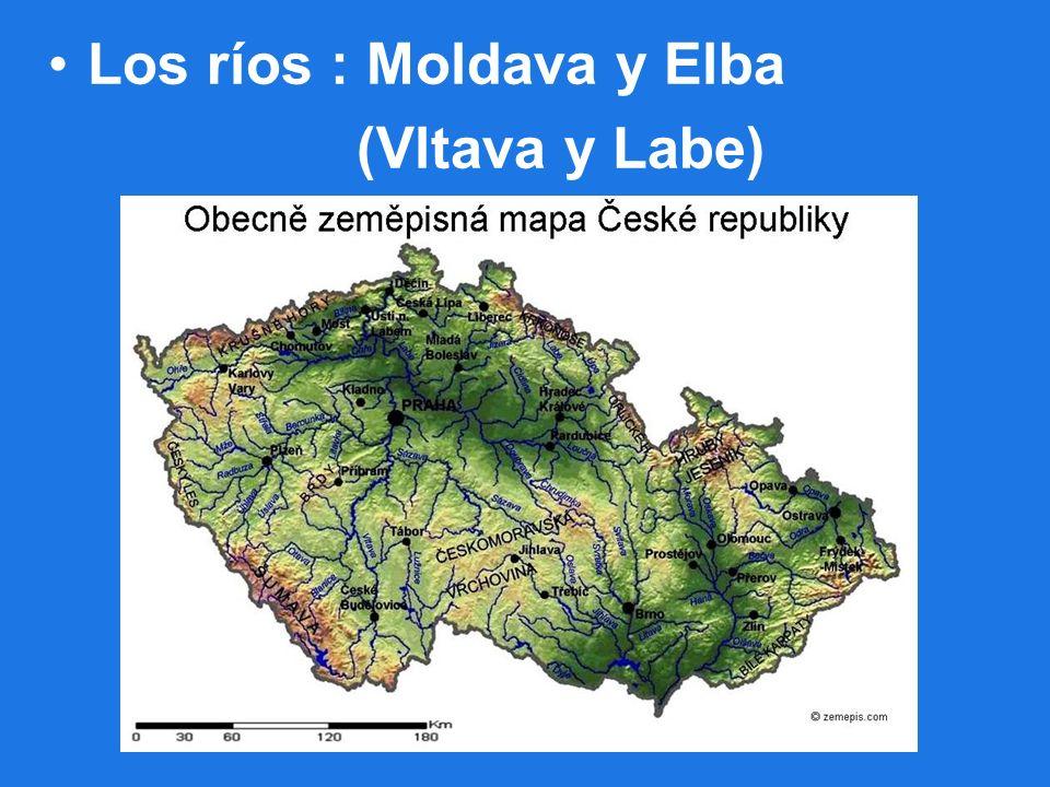 Los ríos : Moldava y Elba