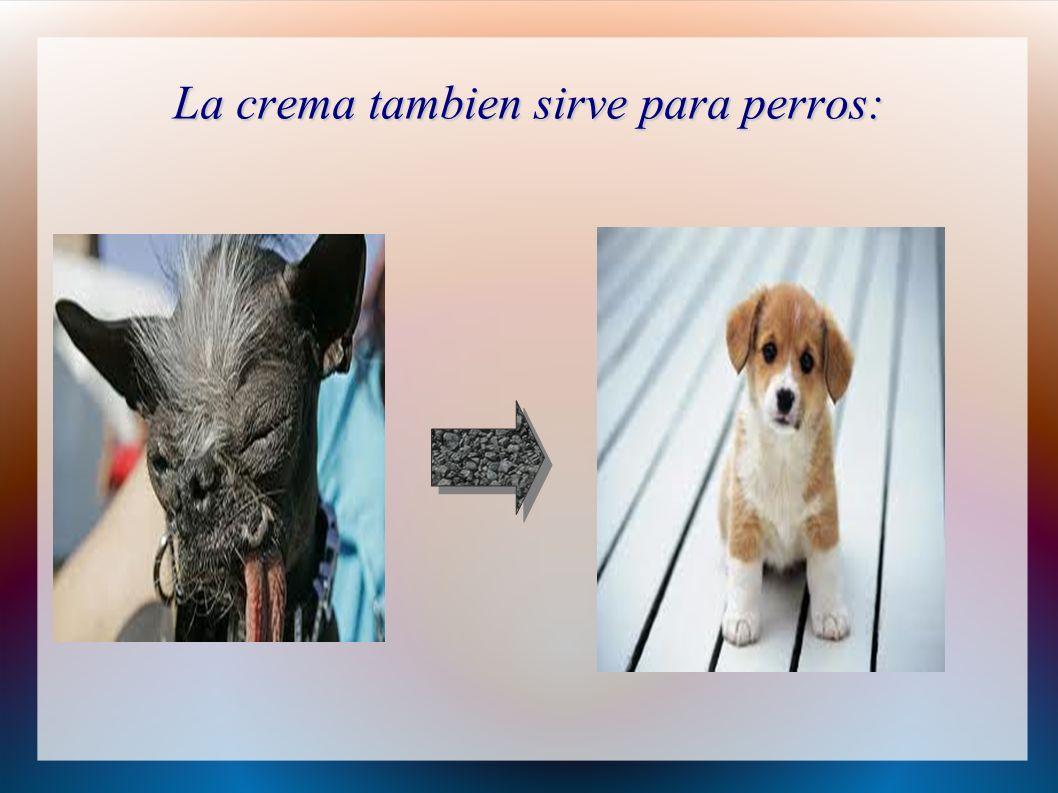 La crema tambien sirve para perros: