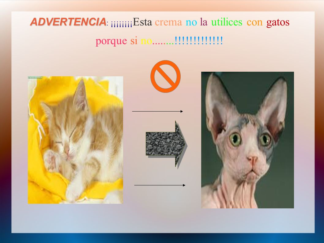 ADVERTENCIA: ¡¡¡¡¡¡¡¡Esta crema no la utilices con gatos porque si no........!!!!!!!!!!!!!