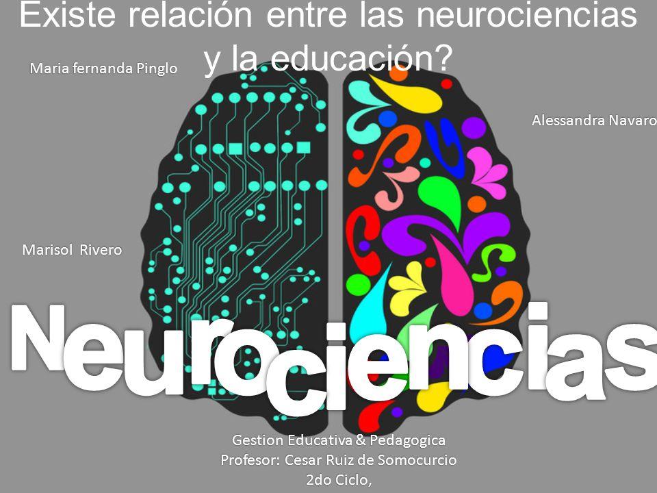 Existe relación entre las neurociencias y la educación