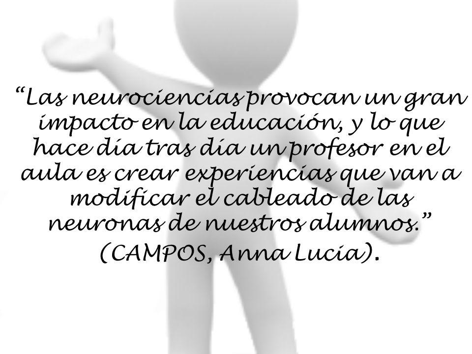 Las neurociencias provocan un gran impacto en la educación, y lo que hace día tras día un profesor en el aula es crear experiencias que van a modificar el cableado de las neuronas de nuestros alumnos. (CAMPOS, Anna Lucia).