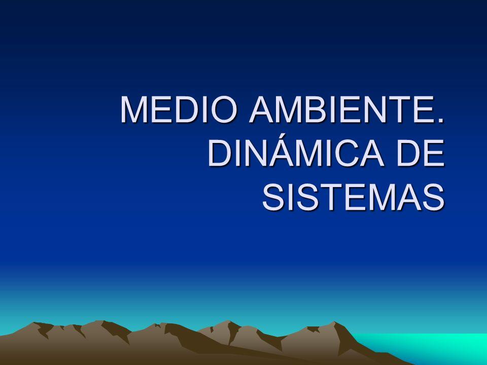 MEDIO AMBIENTE. DINÁMICA DE SISTEMAS