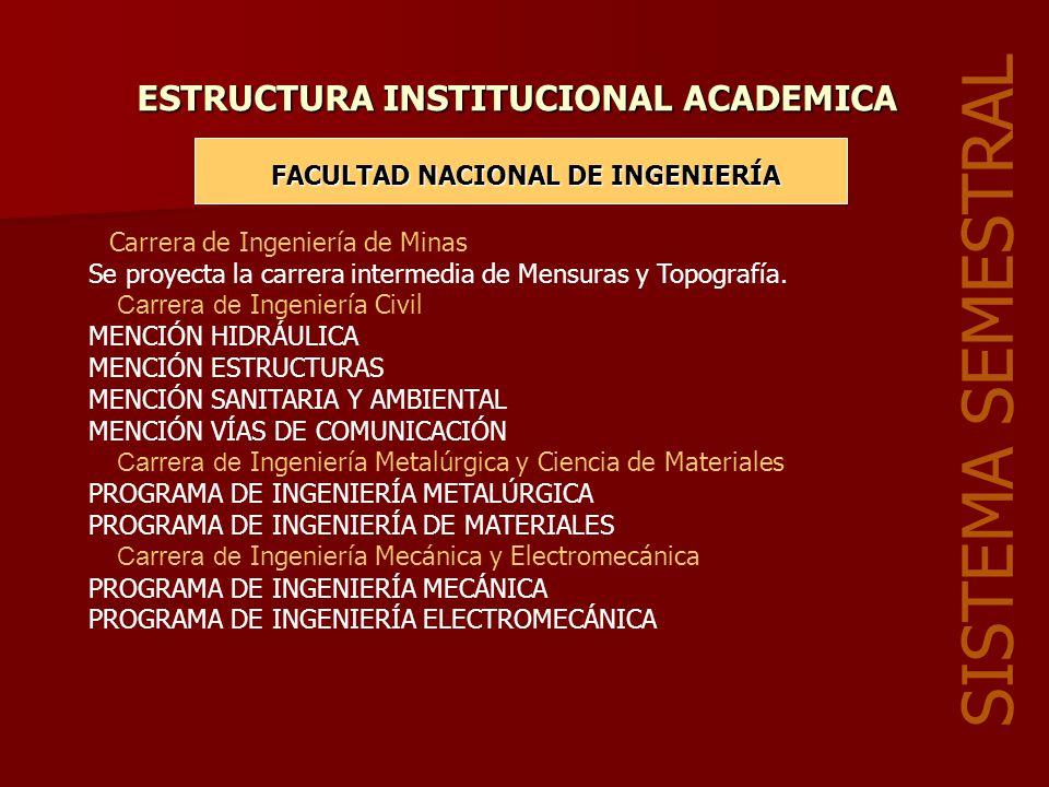 ESTRUCTURA INSTITUCIONAL ACADEMICA