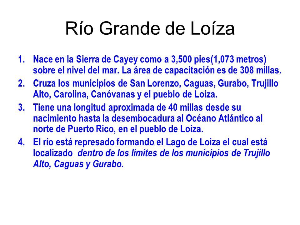Río Grande de LoízaNace en la Sierra de Cayey como a 3,500 pies(1,073 metros) sobre el nivel del mar. La área de capacitación es de 308 millas.