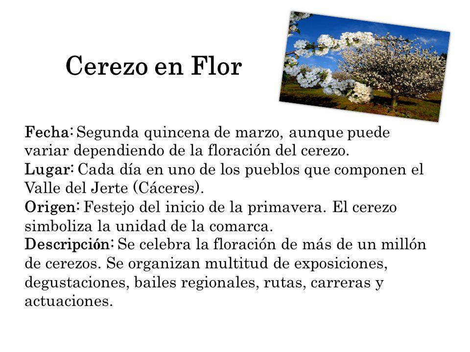 Cerezo en Flor Fecha: Segunda quincena de marzo, aunque puede