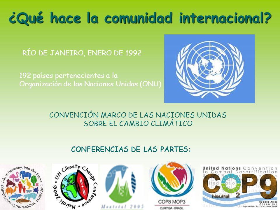 ¿Qué hace la comunidad internacional CONFERENCIAS DE LAS PARTES:
