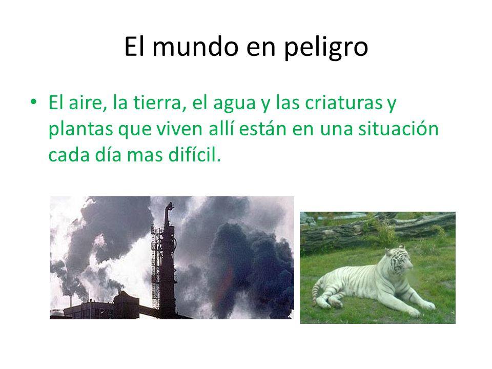 El mundo en peligro El aire, la tierra, el agua y las criaturas y plantas que viven allí están en una situación cada día mas difícil.