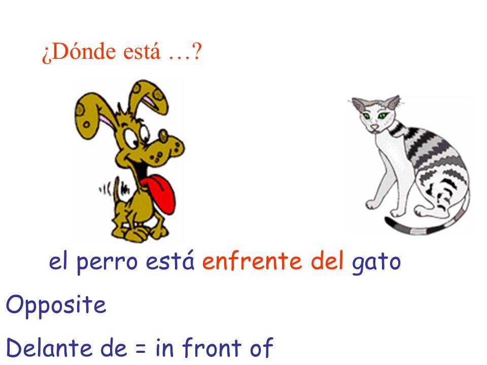 ¿Dónde está … el perro está enfrente del gato Opposite Delante de = in front of