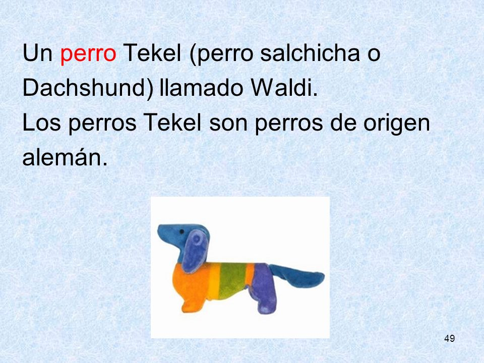 Un perro Tekel (perro salchicha o Dachshund) llamado Waldi.