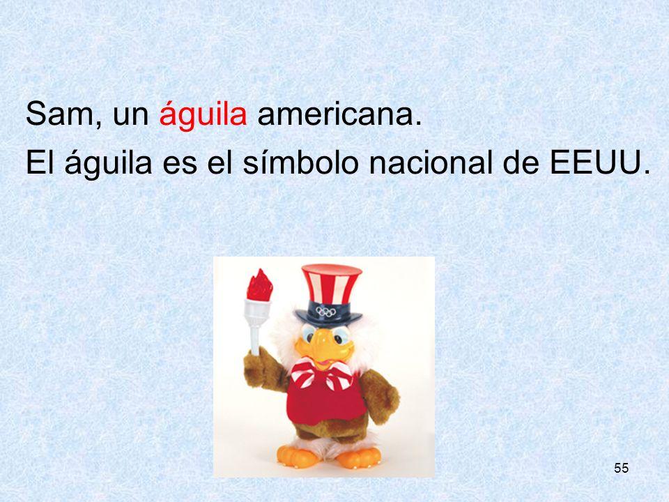 Sam, un águila americana. El águila es el símbolo nacional de EEUU.