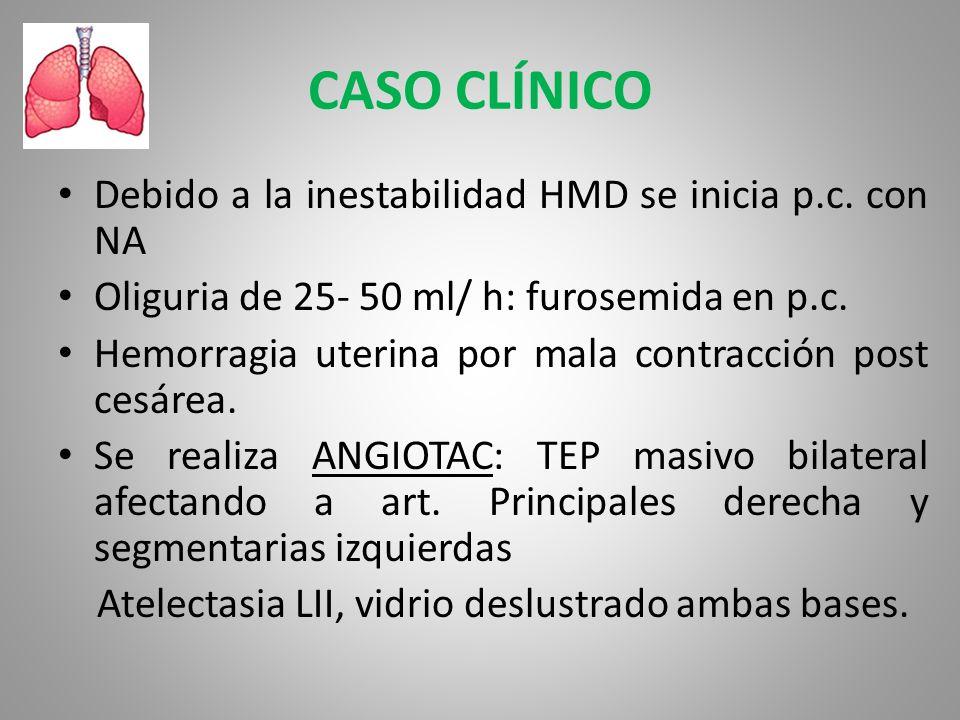 CASO CLÍNICO Debido a la inestabilidad HMD se inicia p.c. con NA