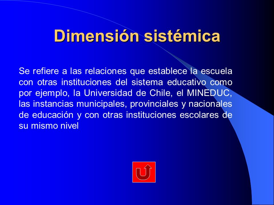 Dimensión sistémica