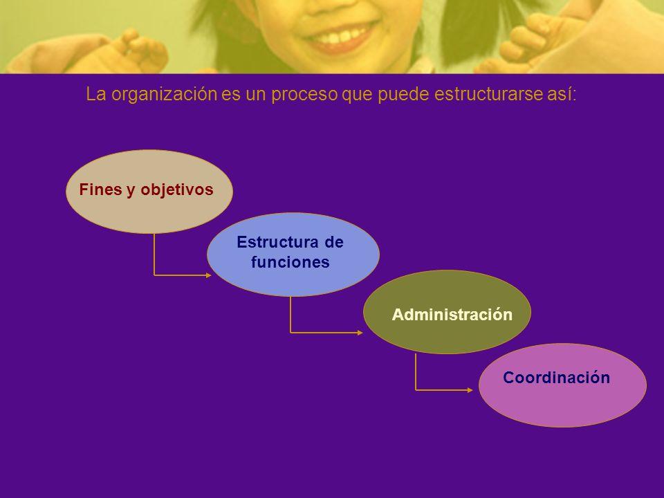 Estructura de funciones