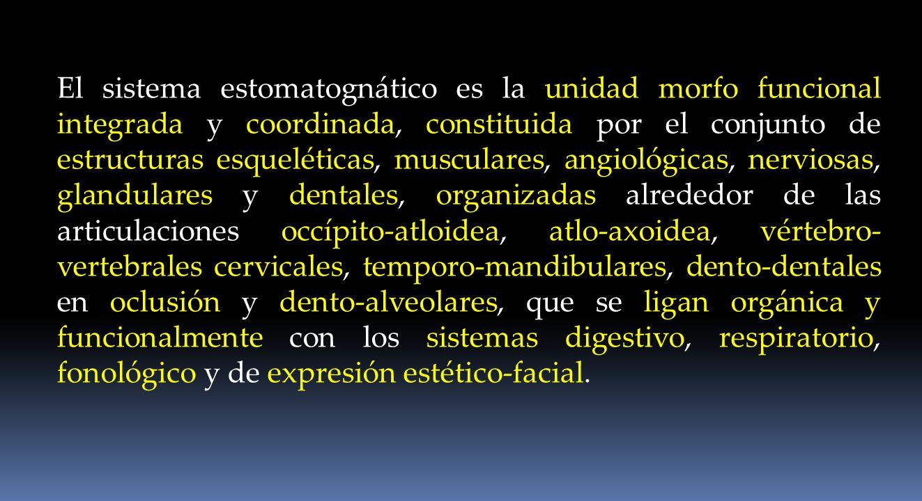 El sistema estomatognático es la unidad morfo funcional integrada y coordinada, constituida por el conjunto de estructuras esqueléticas, musculares, angiológicas, nerviosas, glandulares y dentales, organizadas alrededor de las articulaciones occípito-atloidea, atlo-axoidea, vértebro-vertebrales cervicales, temporo-mandibulares, dento-dentales en oclusión y dento-alveolares, que se ligan orgánica y funcionalmente con los sistemas digestivo, respiratorio, fonológico y de expresión estético-facial.