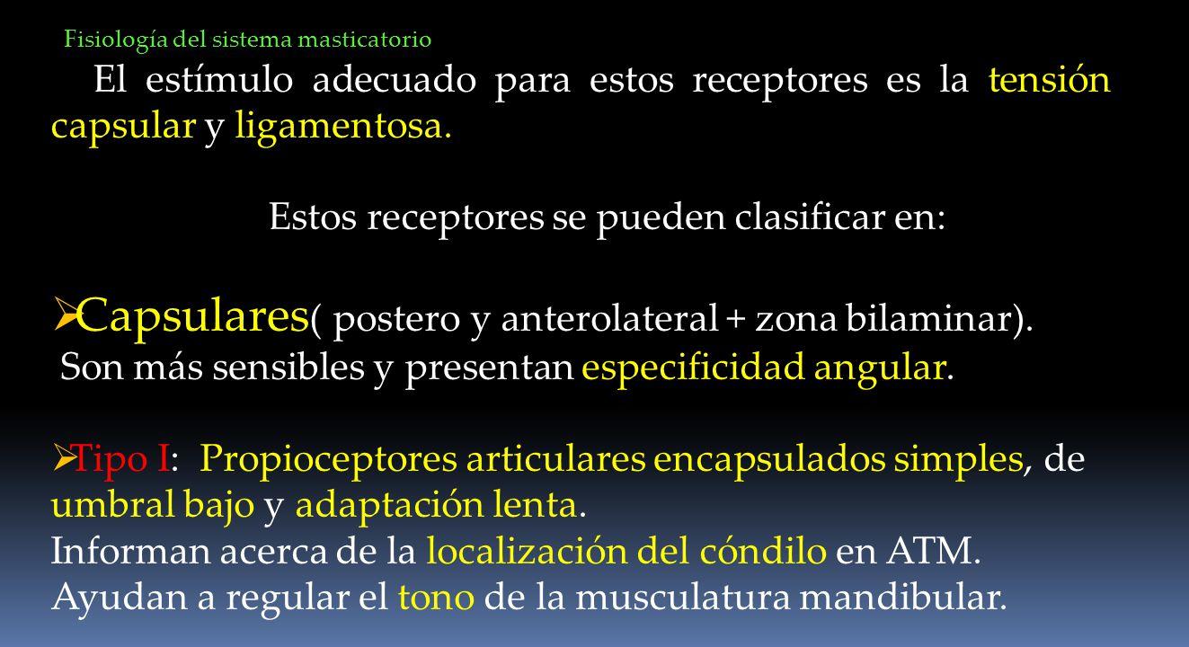 Estos receptores se pueden clasificar en:
