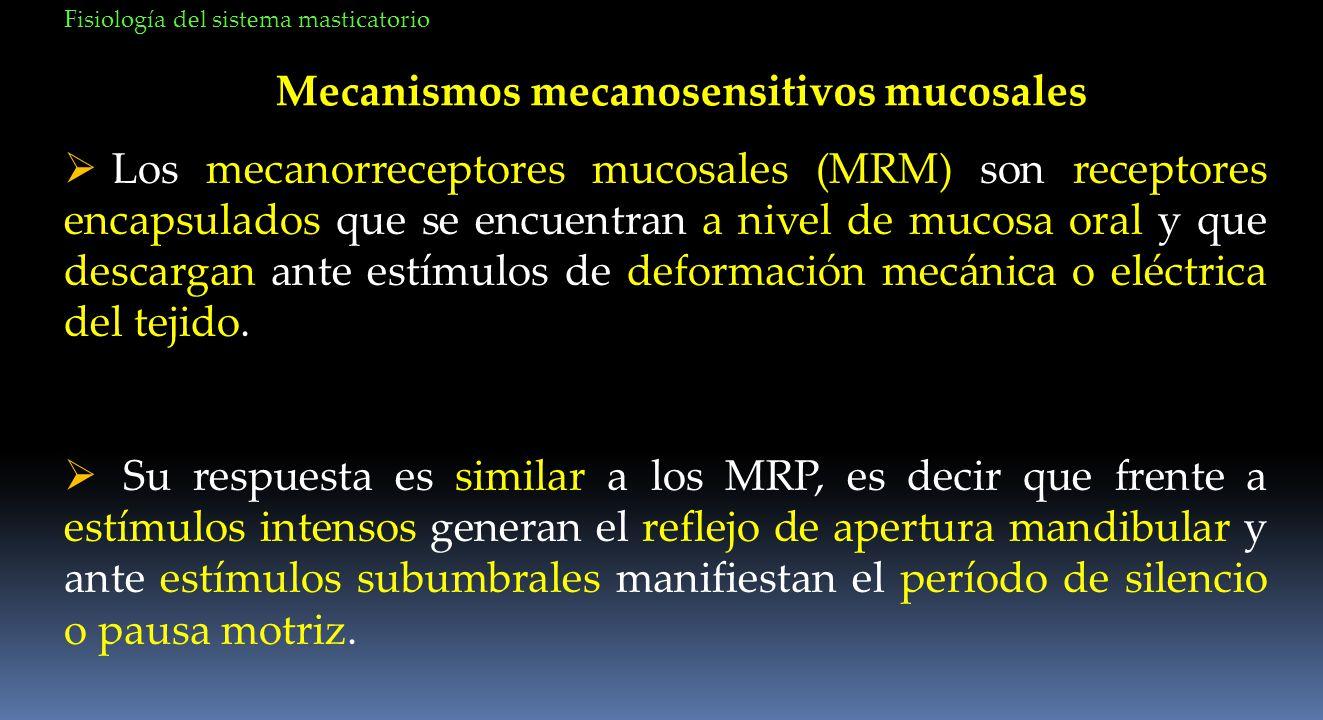 Mecanismos mecanosensitivos mucosales