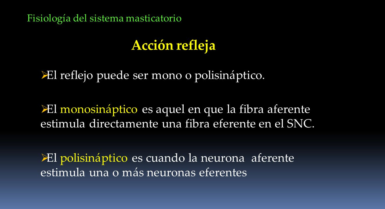 Acción refleja El reflejo puede ser mono o polisináptico.