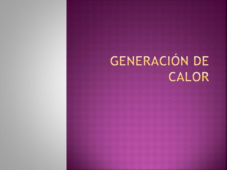 GENERACIÓN DE CALOR
