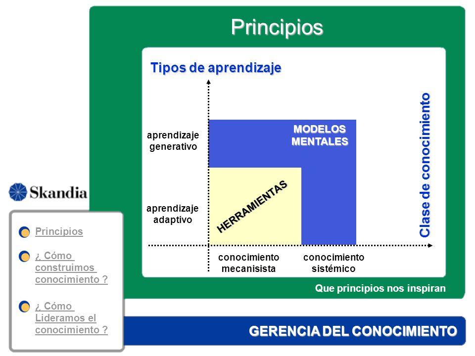 Principios Tipos de aprendizaje Clase de conocimiento