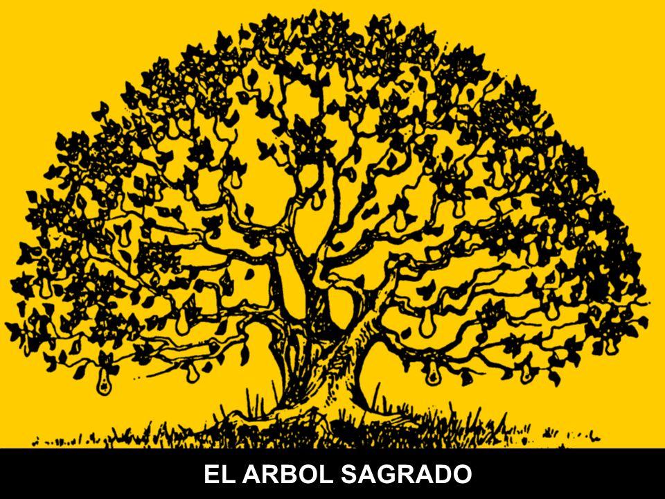 EL ARBOL SAGRADO