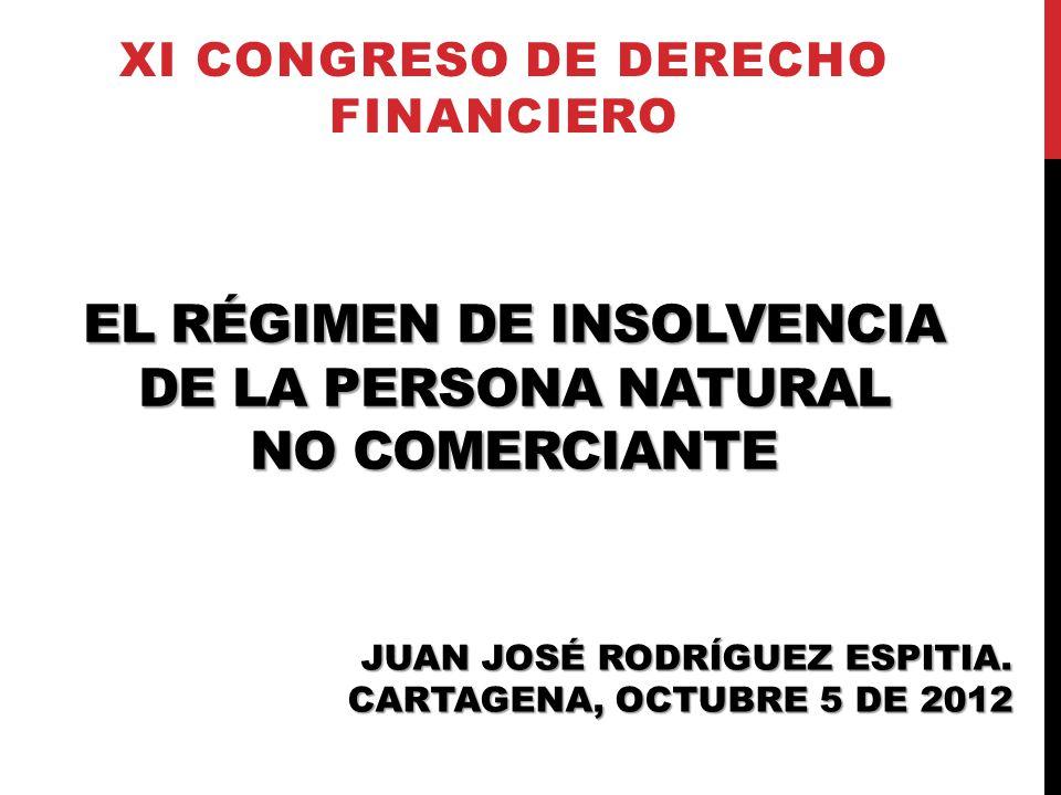 EL RÉGIMEN DE INSOLVENCIA DE LA PERSONA NATURAL NO COMERCIANTE