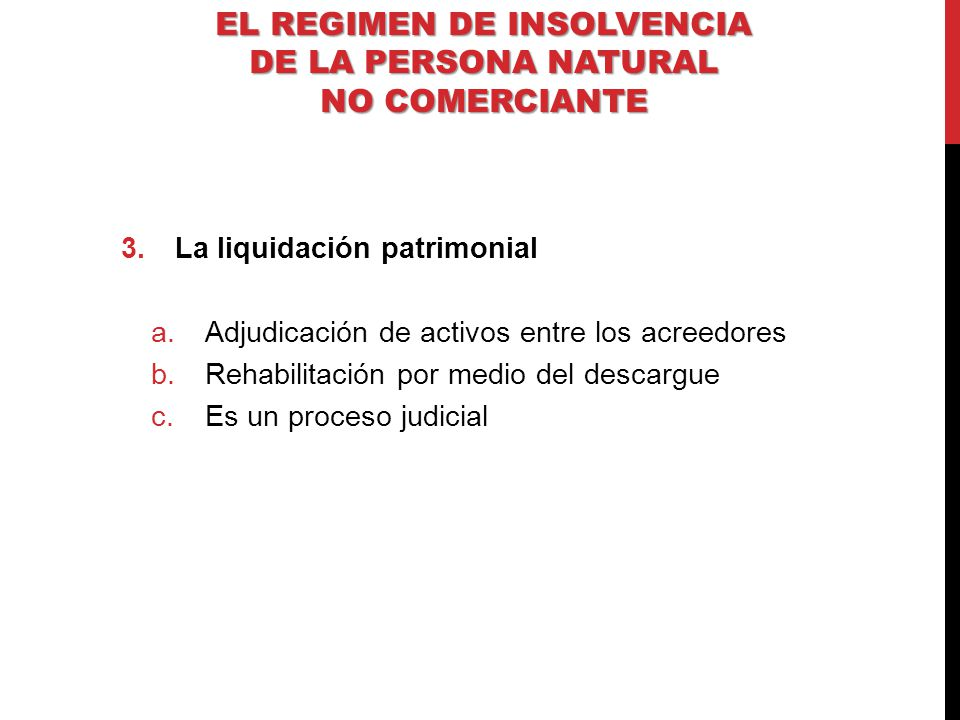EL REGIMEN DE INSOLVENCIA DE LA PERSONA NATURAL NO COMERCIANTE
