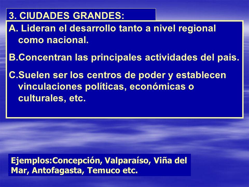 Lideran el desarrollo tanto a nivel regional como nacional.