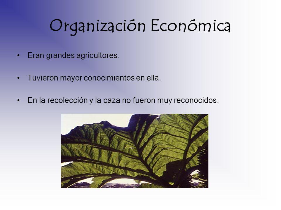Organización Económica