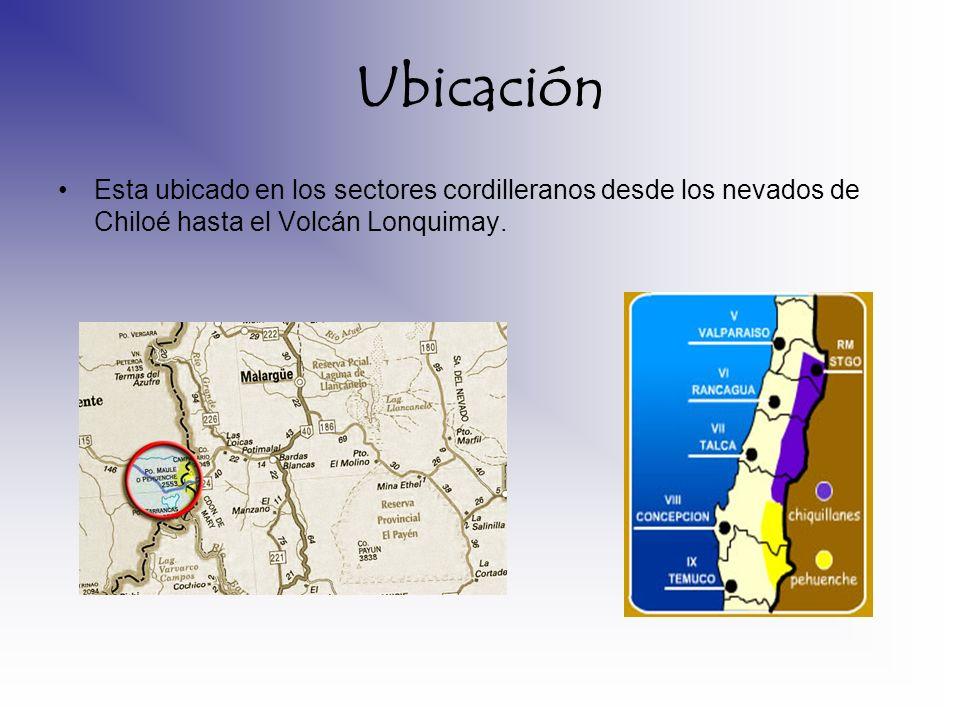 Ubicación Esta ubicado en los sectores cordilleranos desde los nevados de Chiloé hasta el Volcán Lonquimay.
